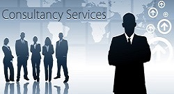 consultancy_services3