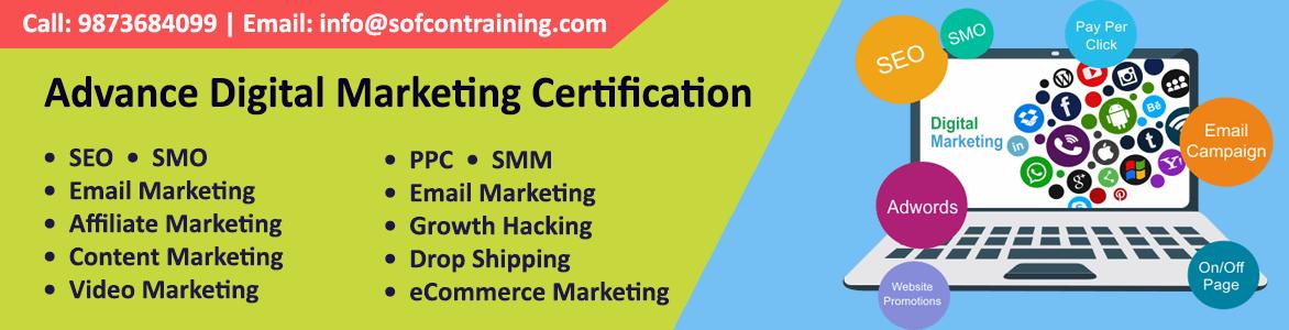 Digital Marketing Training by Sofcon