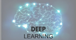 Deep Learning Training by Sofcon